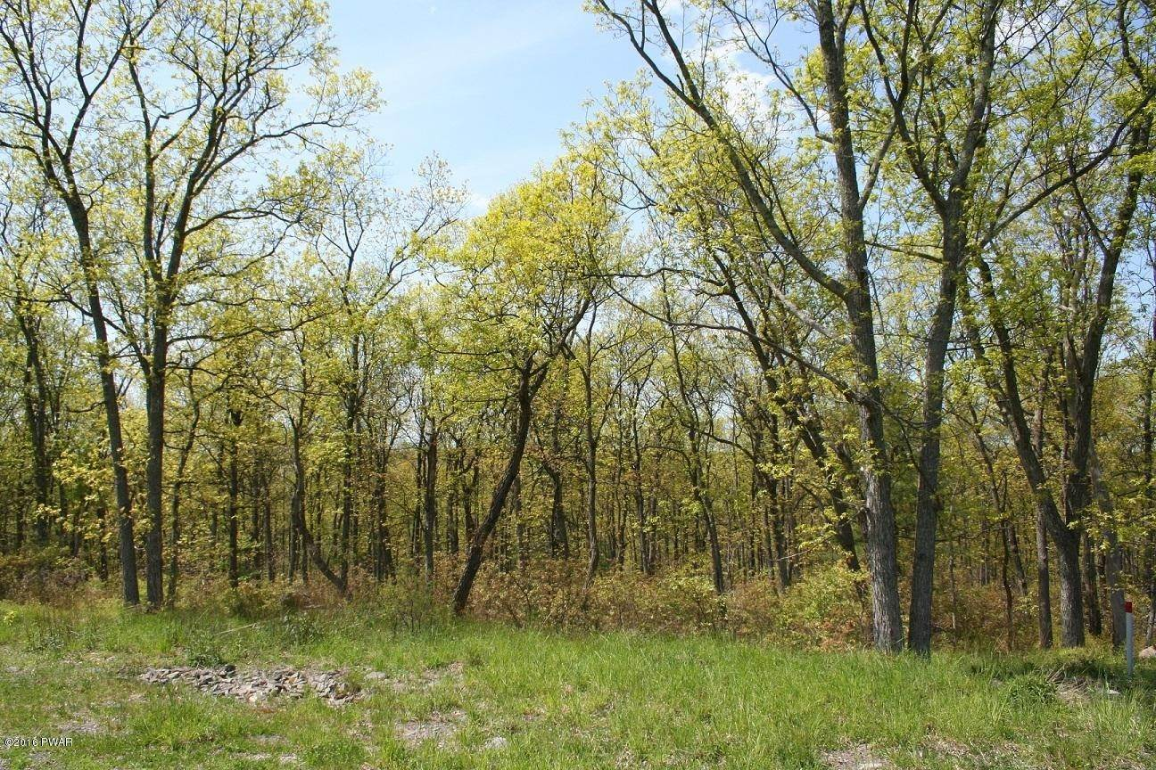 2. Land for Sale at 337 Blue Heron Way Hawley, Pennsylvania 18428 United States