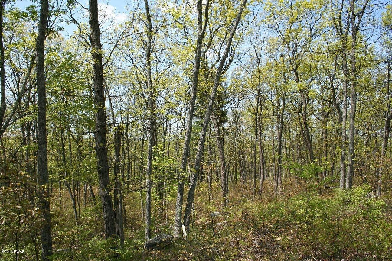 5. Land for Sale at 337 Blue Heron Way Hawley, Pennsylvania 18428 United States