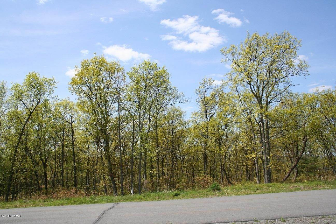 6. Land for Sale at 337 Blue Heron Way Hawley, Pennsylvania 18428 United States