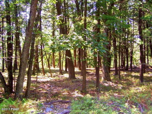 Property for Sale at 750 Pa-390 Tafton, Pennsylvania 18464 United States