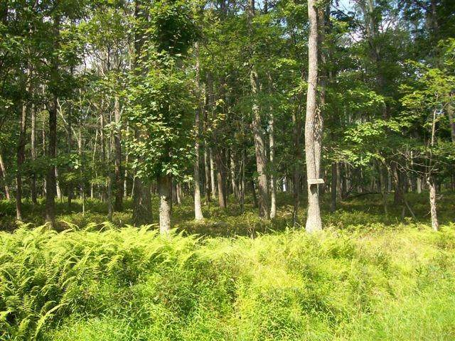Land for Sale at Lot 95 White Tail Cir Hawley, Pennsylvania 18428 United States
