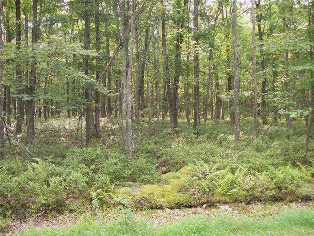 2. Land for Sale at Lot 95 White Tail Cir Hawley, Pennsylvania 18428 United States