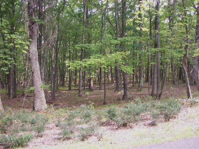 3. Land for Sale at Lot 95 White Tail Cir Hawley, Pennsylvania 18428 United States