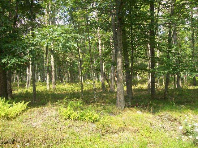 4. Land for Sale at Lot 95 White Tail Cir Hawley, Pennsylvania 18428 United States
