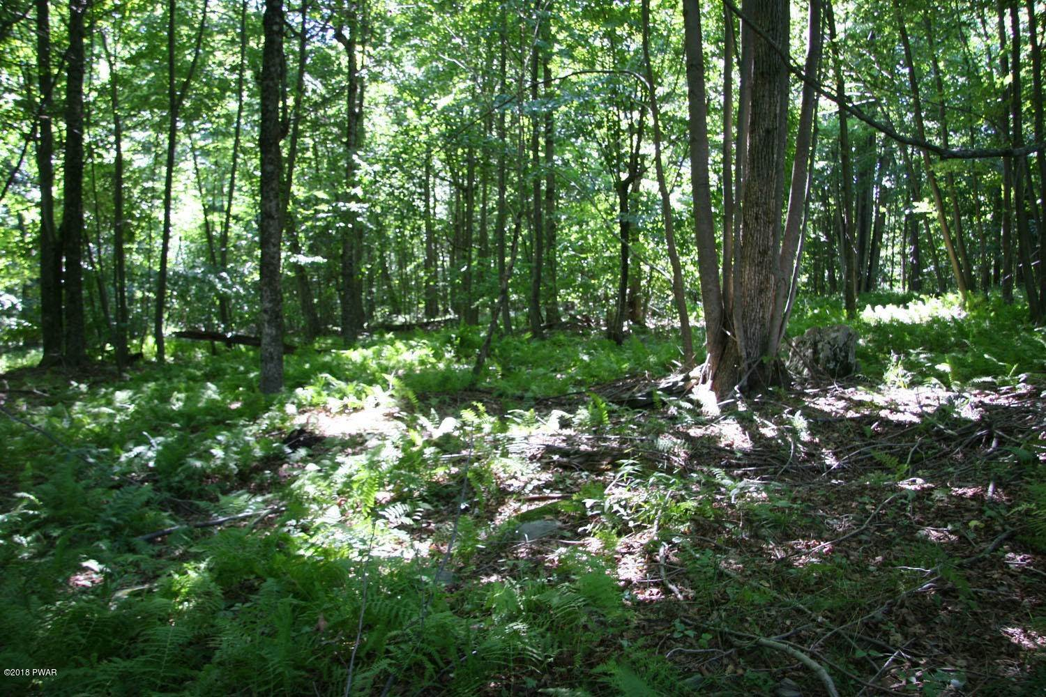 10. Land for Sale at Lot 32 Crestview Dr Equinunk, Pennsylvania 18417 United States