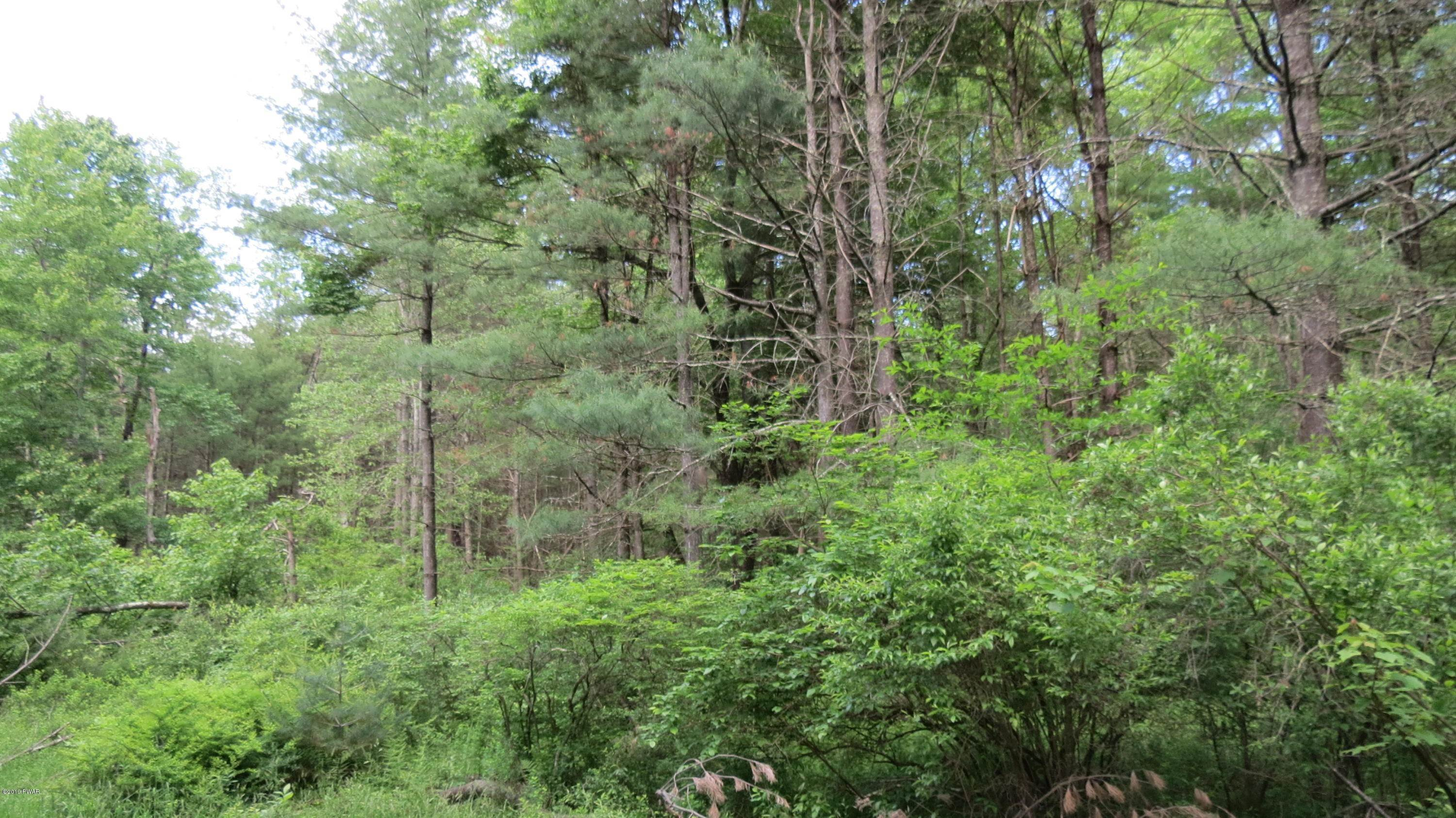 Property for Sale at Lot # 15 Swamp Pond Rd Narrowsburg, New York 12764 United States