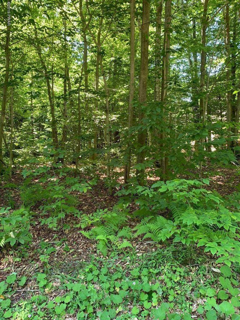 5. Land for Sale at Mountainside Dr Gouldsboro, Pennsylvania 18424 United States