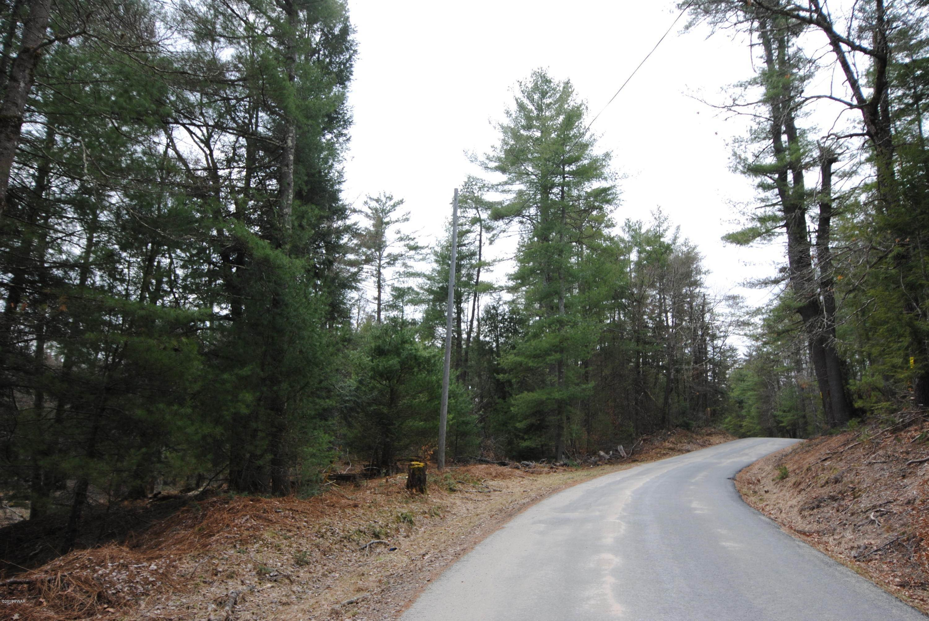 Land for Sale at Swamp Pond Rd Narrowsburg, New York 12764 United States
