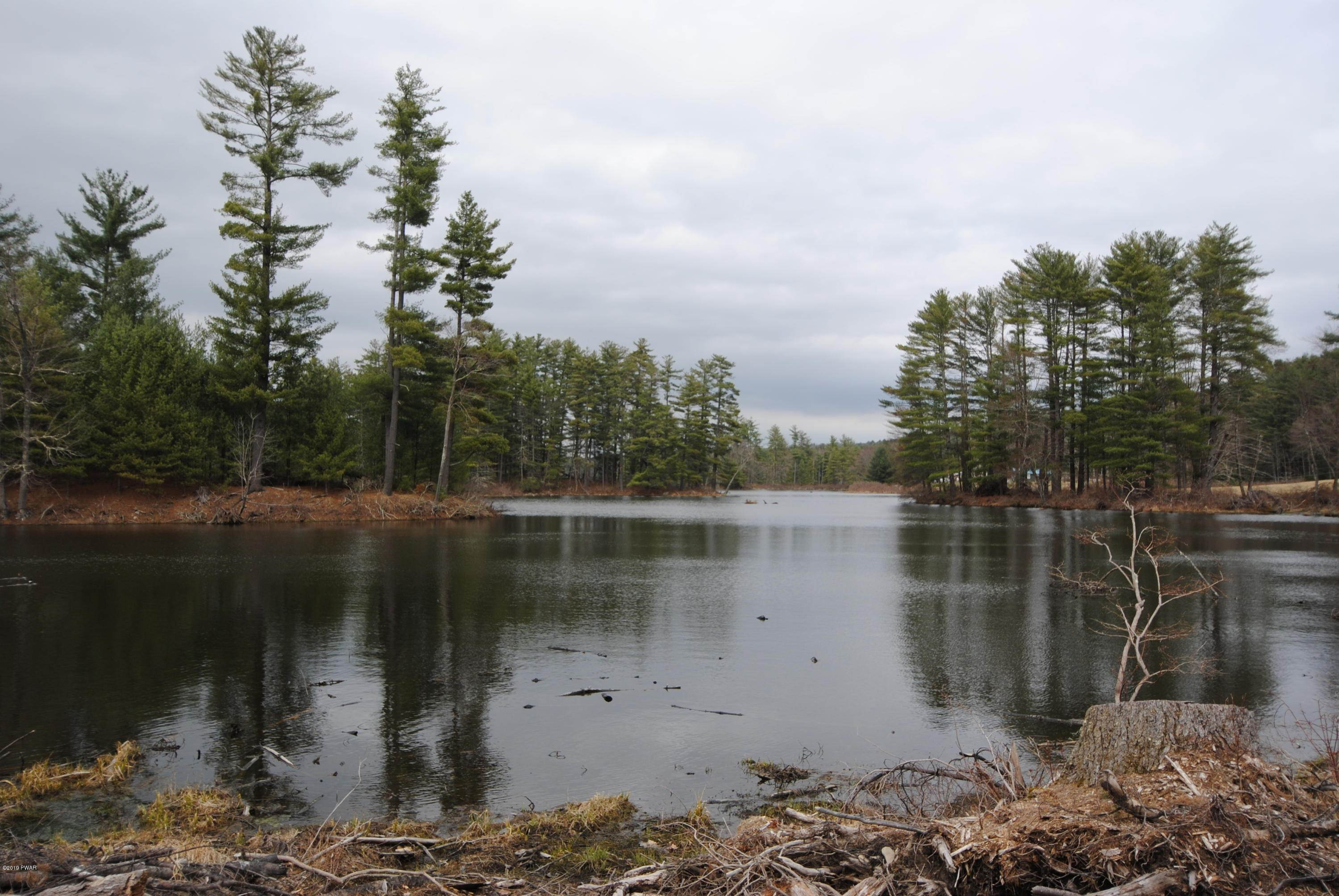 5. Land for Sale at Swamp Pond Rd Narrowsburg, New York 12764 United States