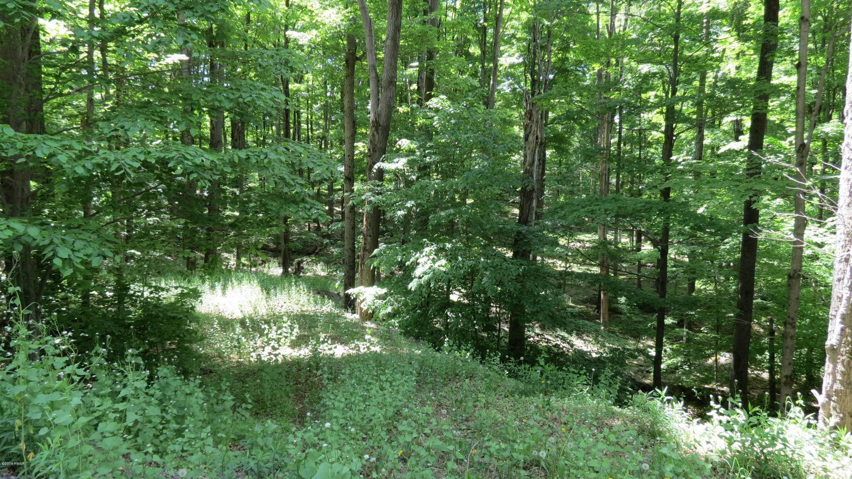 Land for Sale at 2515 &2516 Rocky Mountain Dr Greentown, Pennsylvania 18426 United States