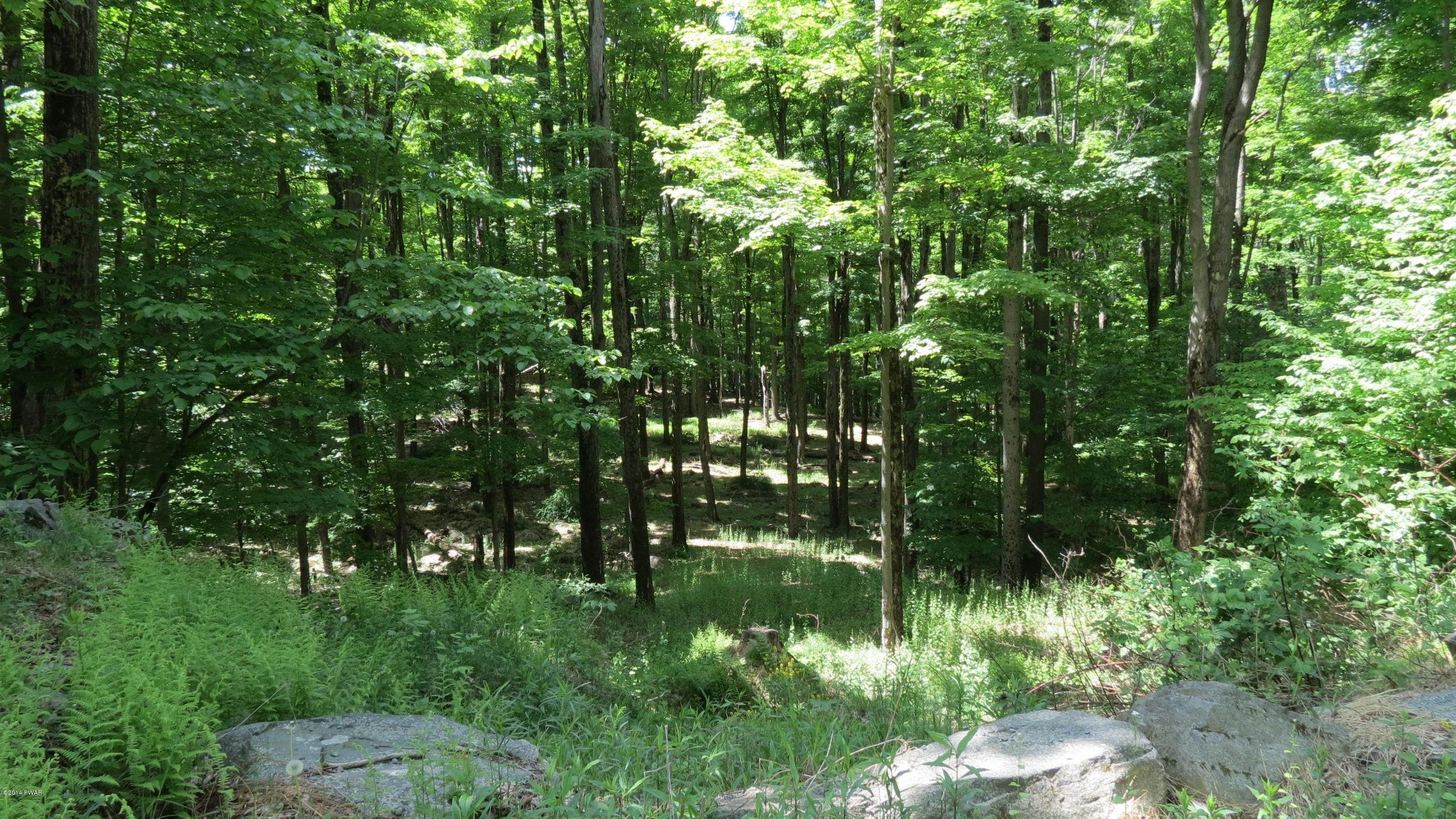 2. Land for Sale at 2515 &2516 Rocky Mountain Dr Greentown, Pennsylvania 18426 United States