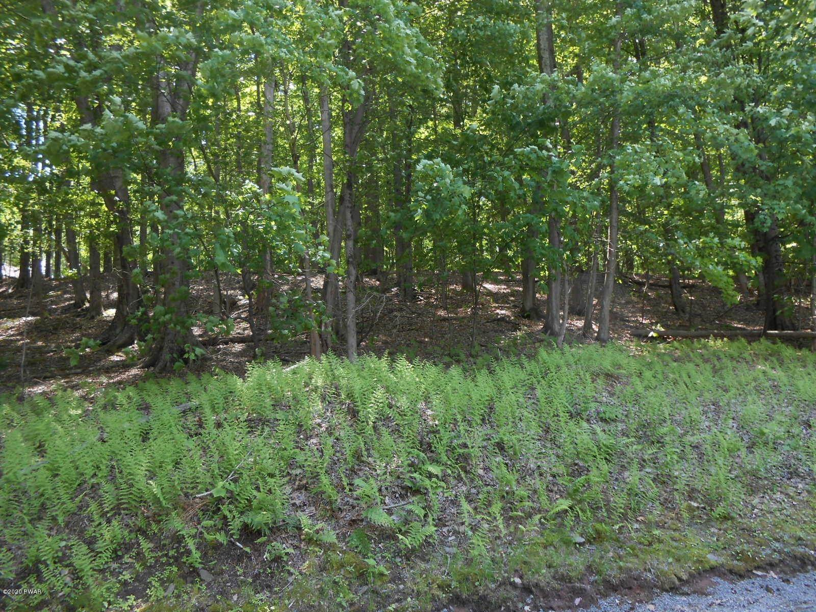 4. Land for Sale at Lot 22 N Briar Hill Dr Lake Ariel, Pennsylvania 18436 United States