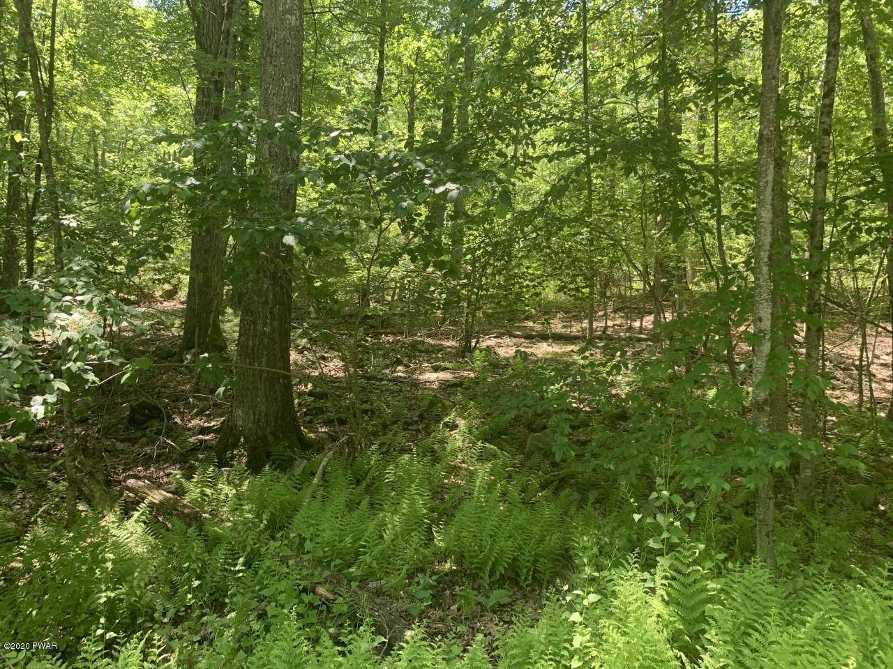 Land for Sale at Lot 92 Sec 2 Block 92 Dingmans Ferry, Pennsylvania 18328 United States