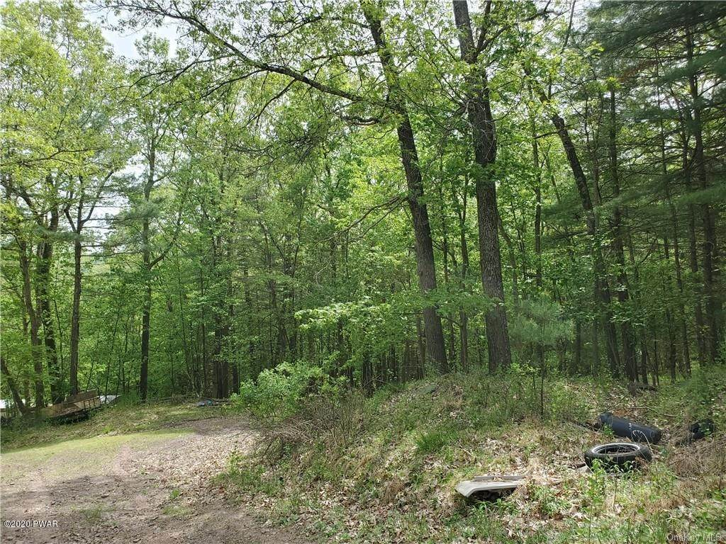 Property for Sale at Dry Brook Barryville, New York 12719 United States
