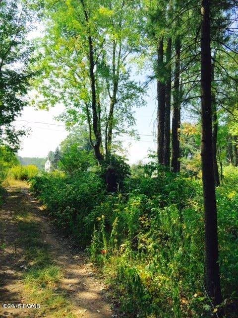 5. Land for Sale at Lot 11 Ripple Ln Beach Lake, Pennsylvania 18405 United States