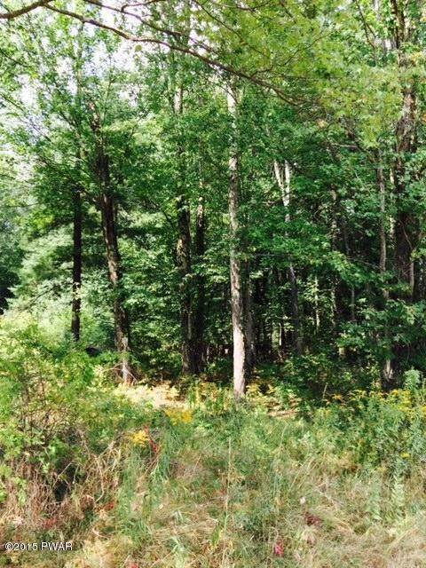 6. Land for Sale at Lot 11 Ripple Ln Beach Lake, Pennsylvania 18405 United States
