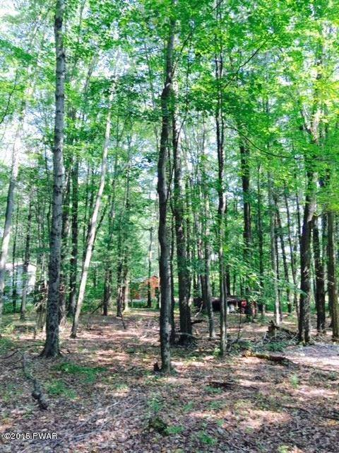 2. Land for Sale at Lot 11 Ripple Ln Beach Lake, Pennsylvania 18405 United States