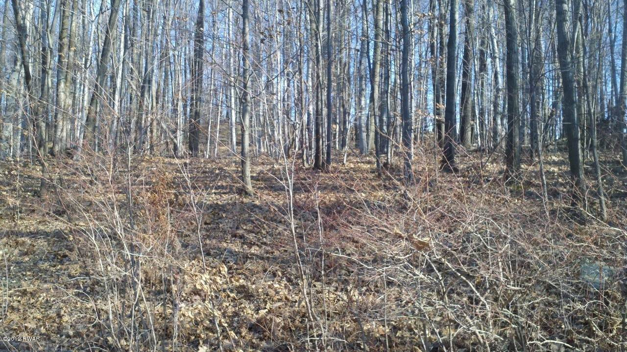 2. Land for Sale at 5 Forever Green Rd Lakeville, Pennsylvania 18438 United States