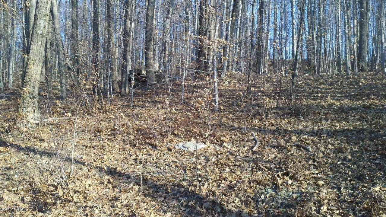 4. Land for Sale at 5 Forever Green Rd Lakeville, Pennsylvania 18438 United States