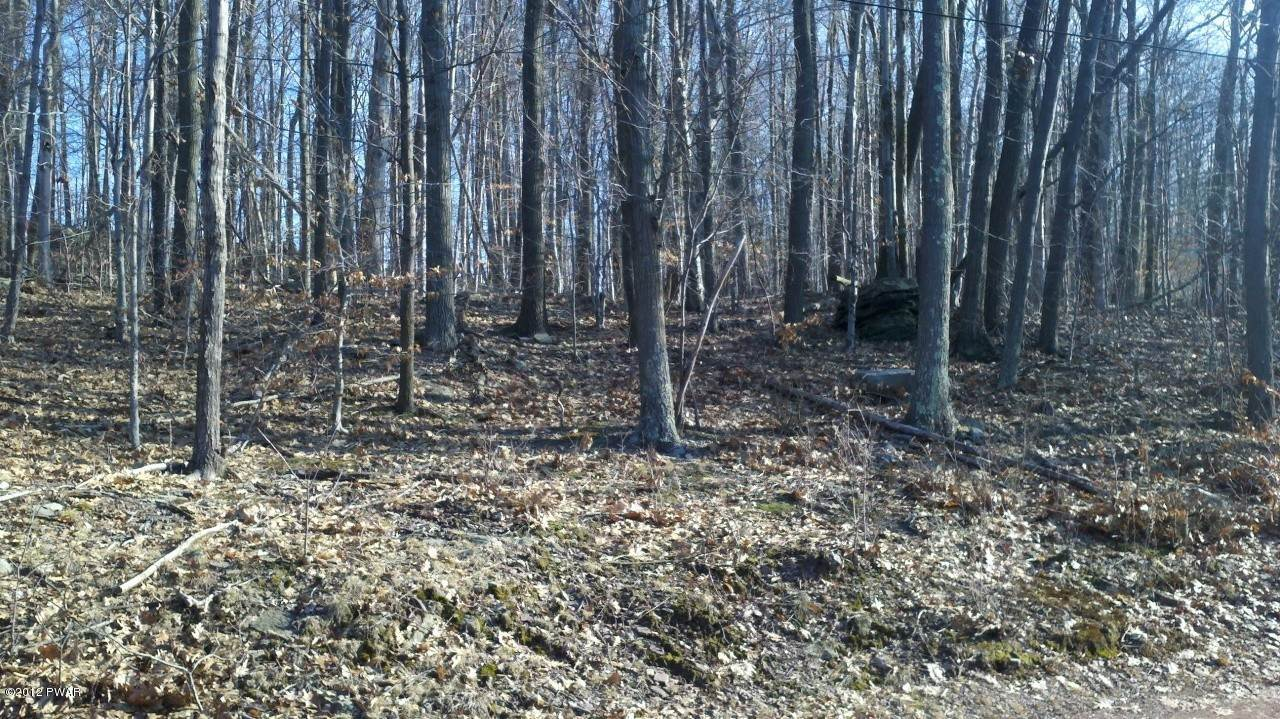 6. Land for Sale at 5 Forever Green Rd Lakeville, Pennsylvania 18438 United States