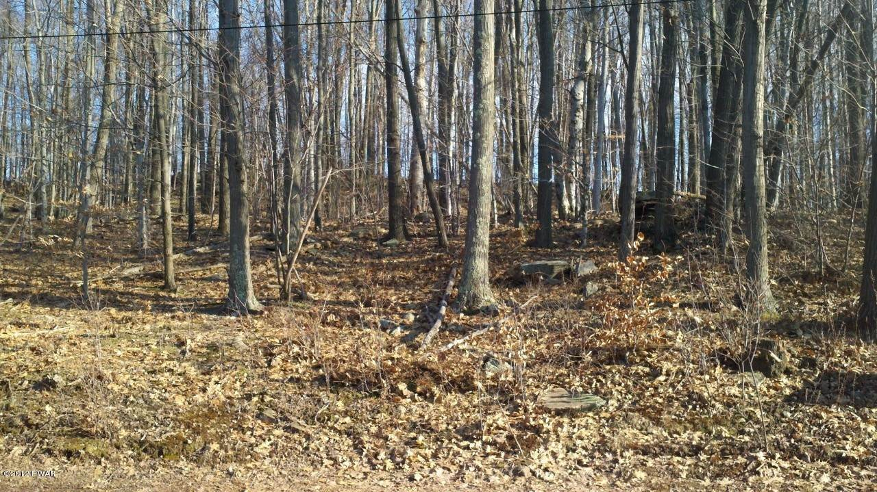 8. Land for Sale at 5 Forever Green Rd Lakeville, Pennsylvania 18438 United States