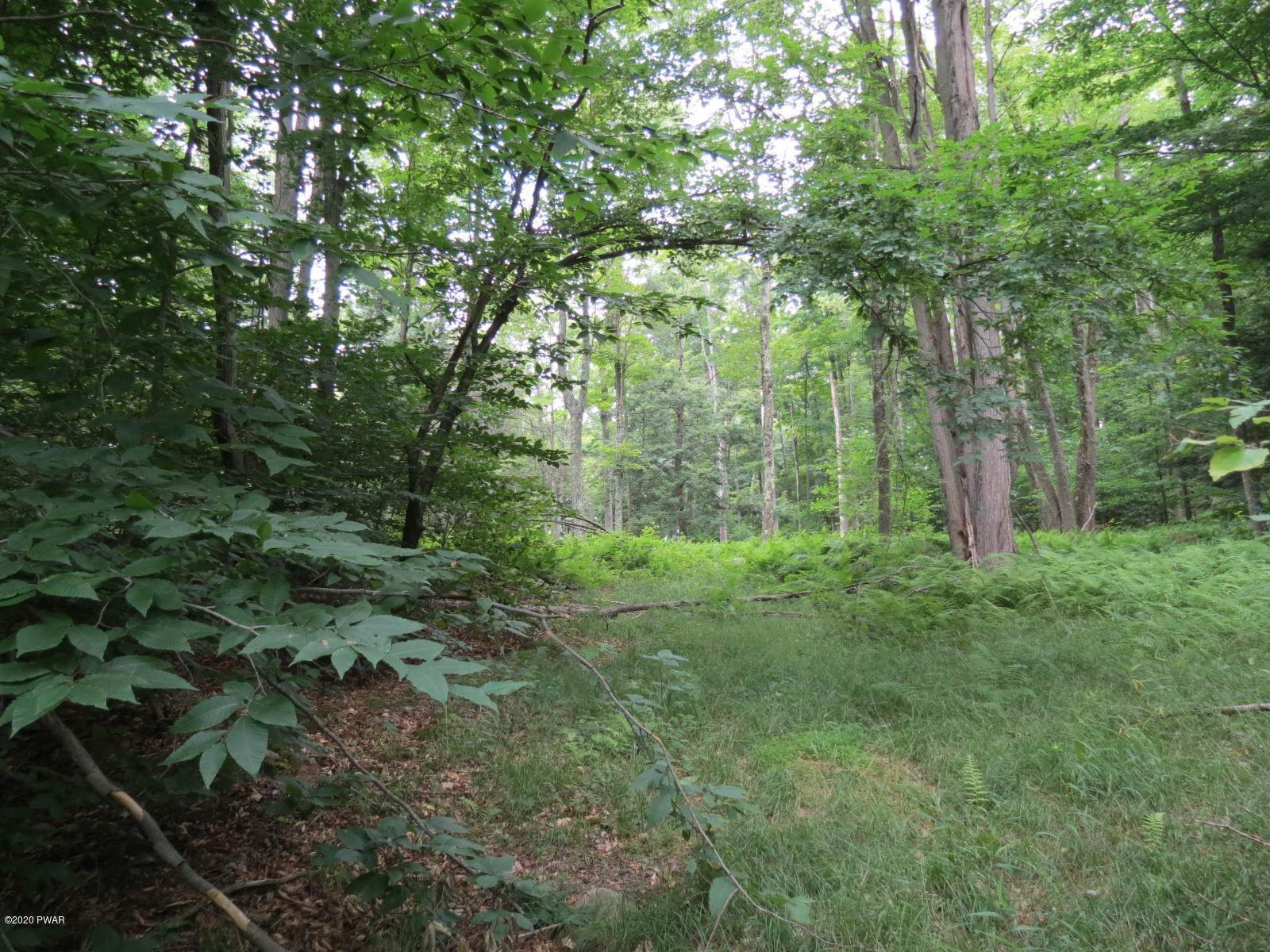 Property for Sale at 115 Dutch Flats Rd Greentown, Pennsylvania 18426 United States