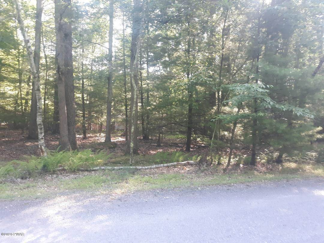 Land for Sale at 58 Willows Ct Hawley, Pennsylvania 18428 United States