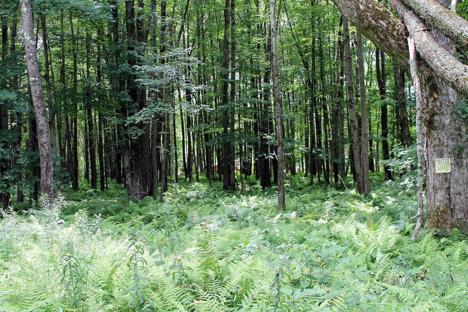 2. Land for Sale at Lot 18 Stonefence Rd Damascus, Pennsylvania 18415 United States