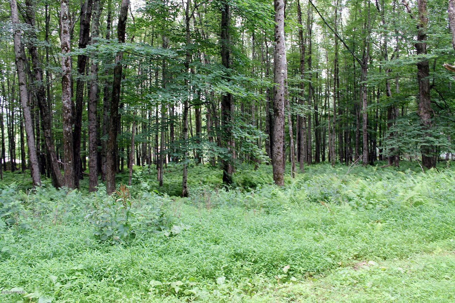 6. Land for Sale at Lot 18 Stonefence Rd Damascus, Pennsylvania 18415 United States