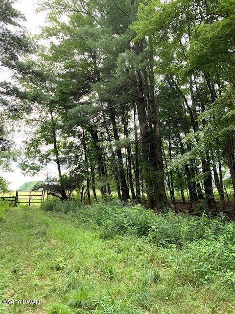 4. Land for Sale at Lot 11 Ripple Ln Beach Lake, Pennsylvania 18405 United States
