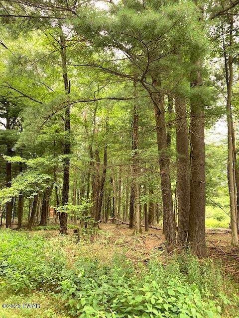 3. Land for Sale at Lot 11 Ripple Ln Beach Lake, Pennsylvania 18405 United States