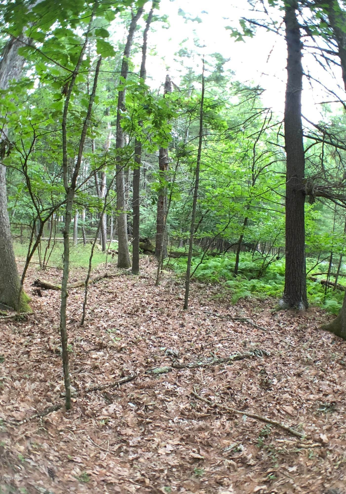4. Land for Sale at 470 Eastwood Cir Hawley, Pennsylvania 18428 United States