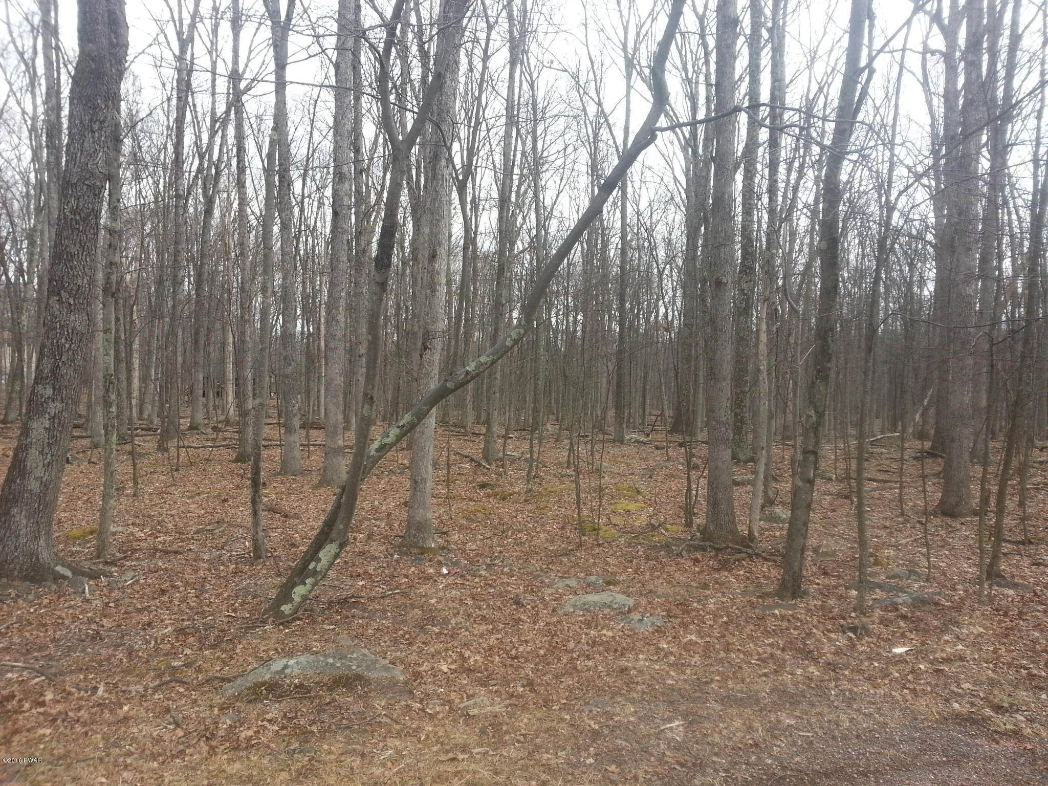 Land for Sale at 142 Evergreen Ct Hawley, Pennsylvania 18428 United States