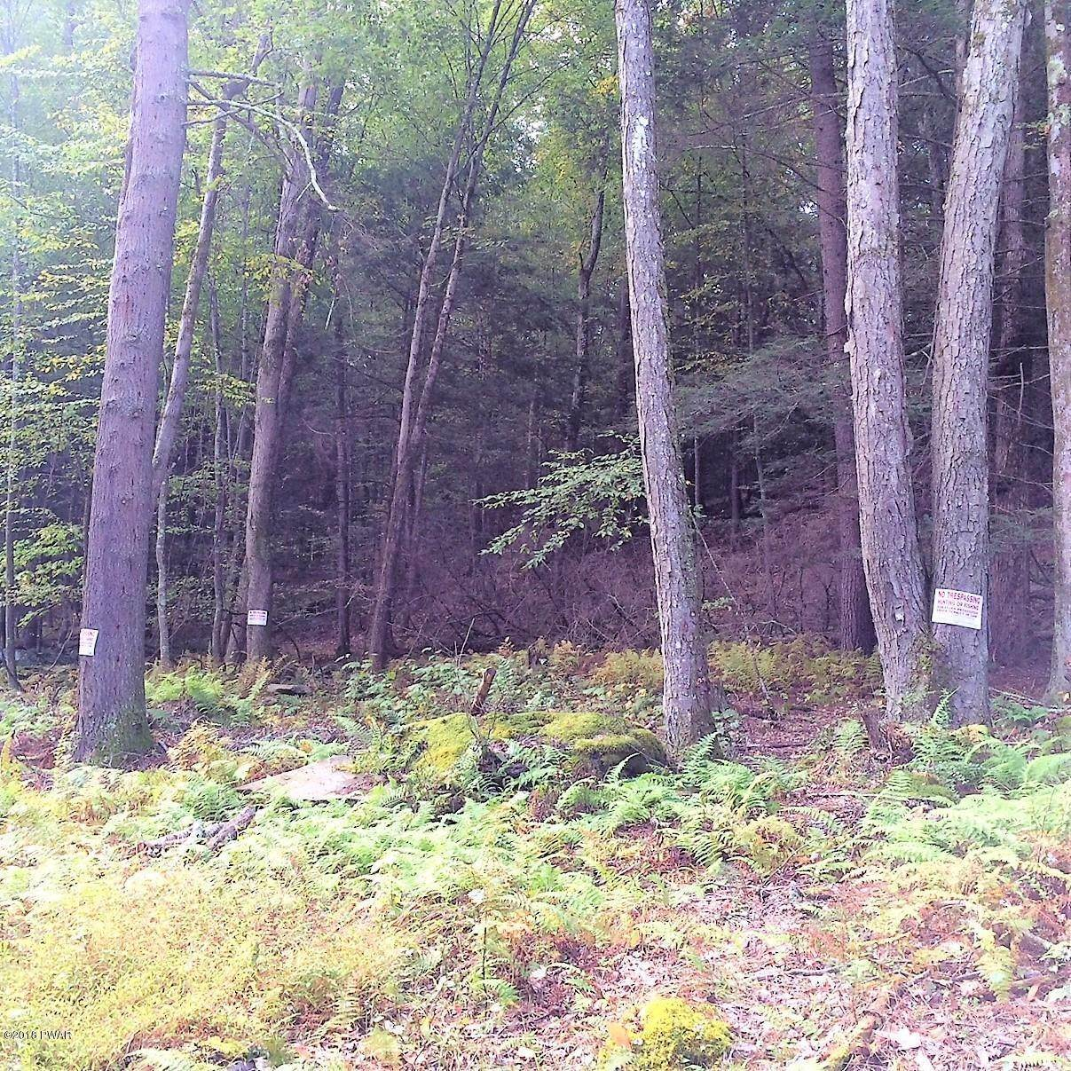 5. Land for Sale at 0 River Rd Damascus, Pennsylvania 18415 United States