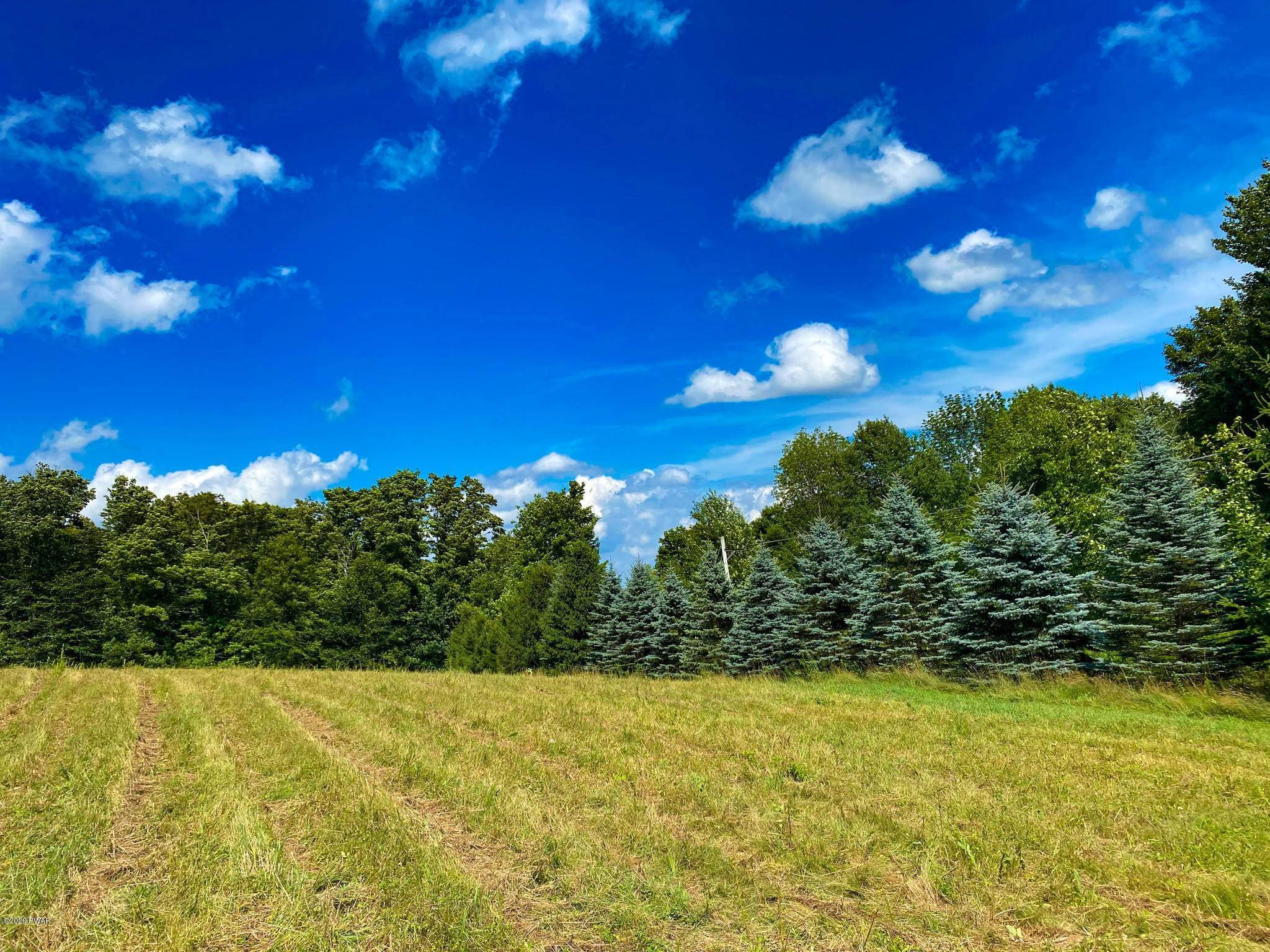 4. Land for Sale at 4745 Jubilee Rd Madison Township, Pennsylvania 18444 United States