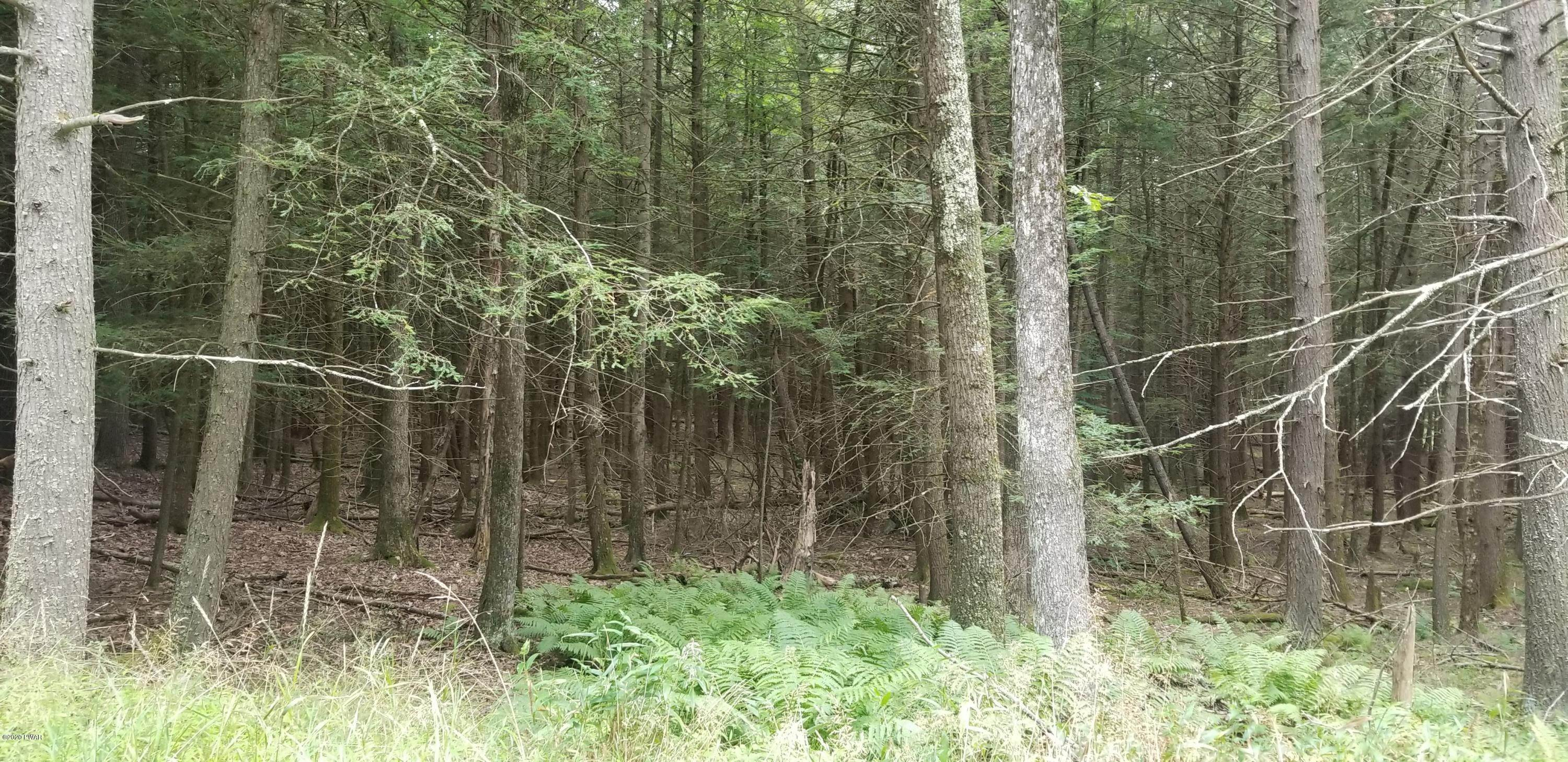 3. Land for Sale at Lot 18 Bear Run Rd Narrowsburg, New York 12764 United States