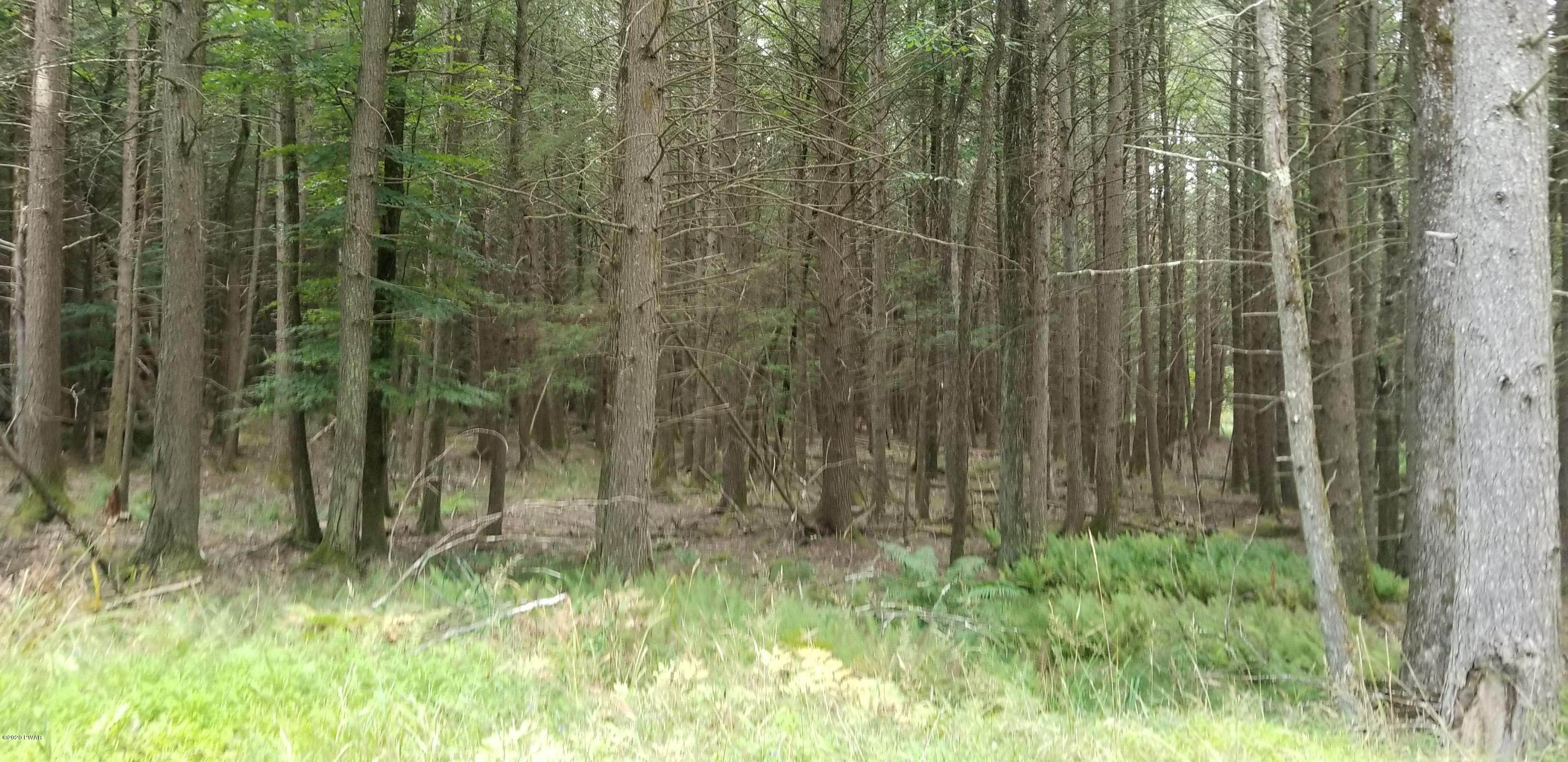 5. Land for Sale at Lot 18 Bear Run Rd Narrowsburg, New York 12764 United States