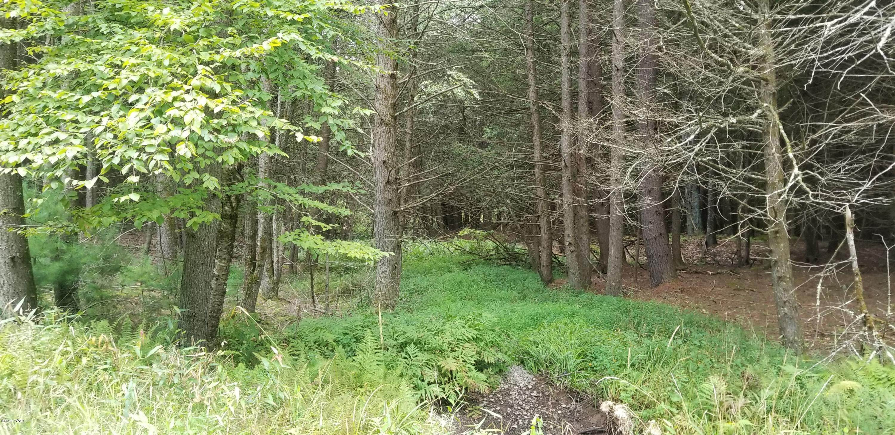 7. Land for Sale at Lot 18 Bear Run Rd Narrowsburg, New York 12764 United States