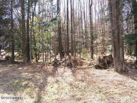 3. Land for Sale at 220 Twin Rocks Rd Sterling, Pennsylvania 18427 United States
