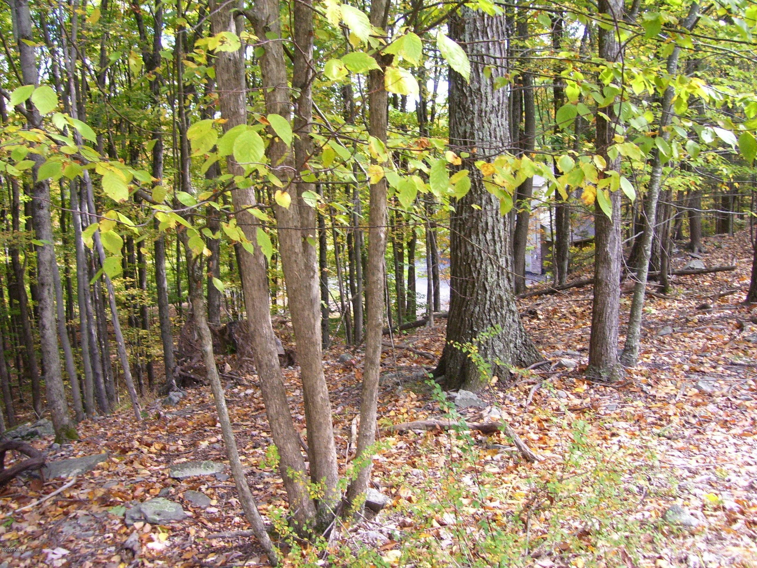 5. Land for Sale at Lot 159 Mustang Rd Lake Ariel, Pennsylvania 18436 United States