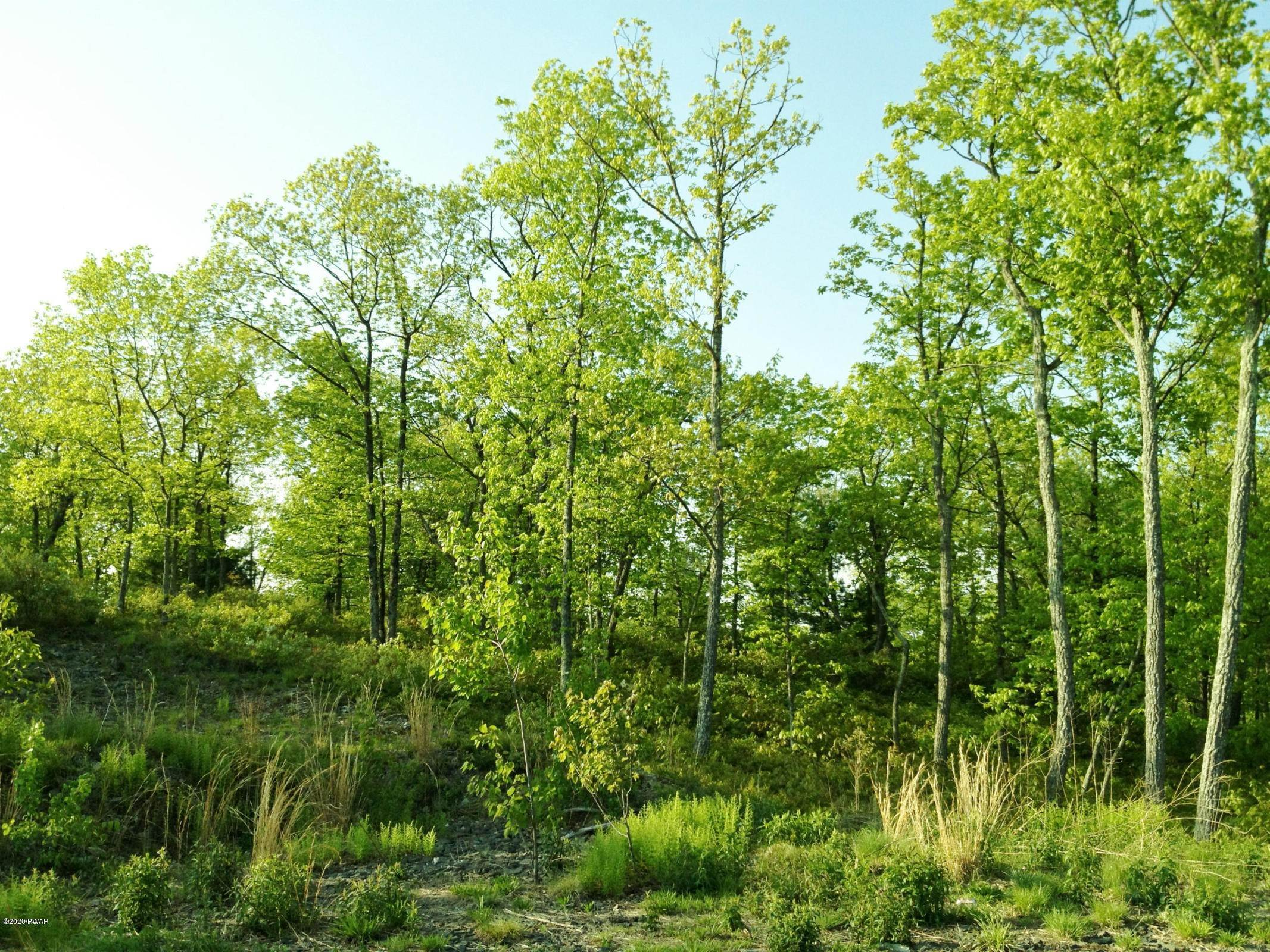 11. Land for Sale at Lot 53 Summit Ct Milford, Pennsylvania 18337 United States
