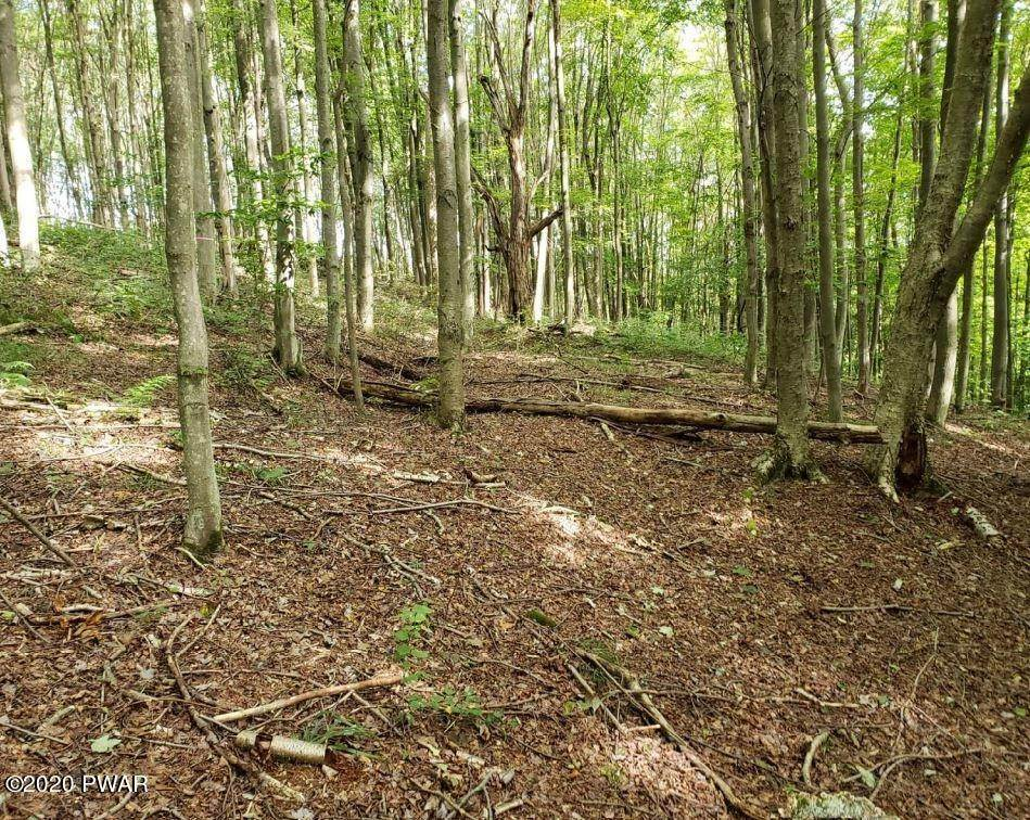 Land for Sale at Creek Dr Prompton, Pennsylvania 18456 United States