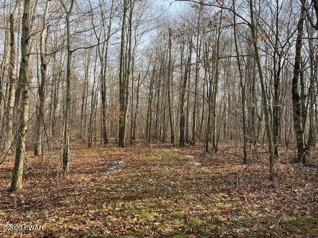 Land for Sale at Welk Road & Fork Mountain Rd Equinunk, Pennsylvania 18417 United States