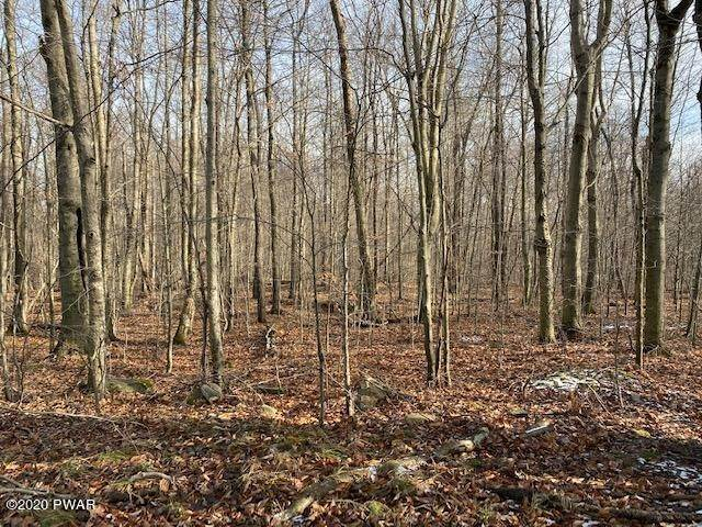 2. Land for Sale at Welk Road & Fork Mountain Rd Equinunk, Pennsylvania 18417 United States