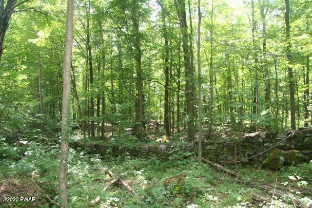 Land for Sale at 29 Applegate Rd Lake Ariel, Pennsylvania 18436 United States