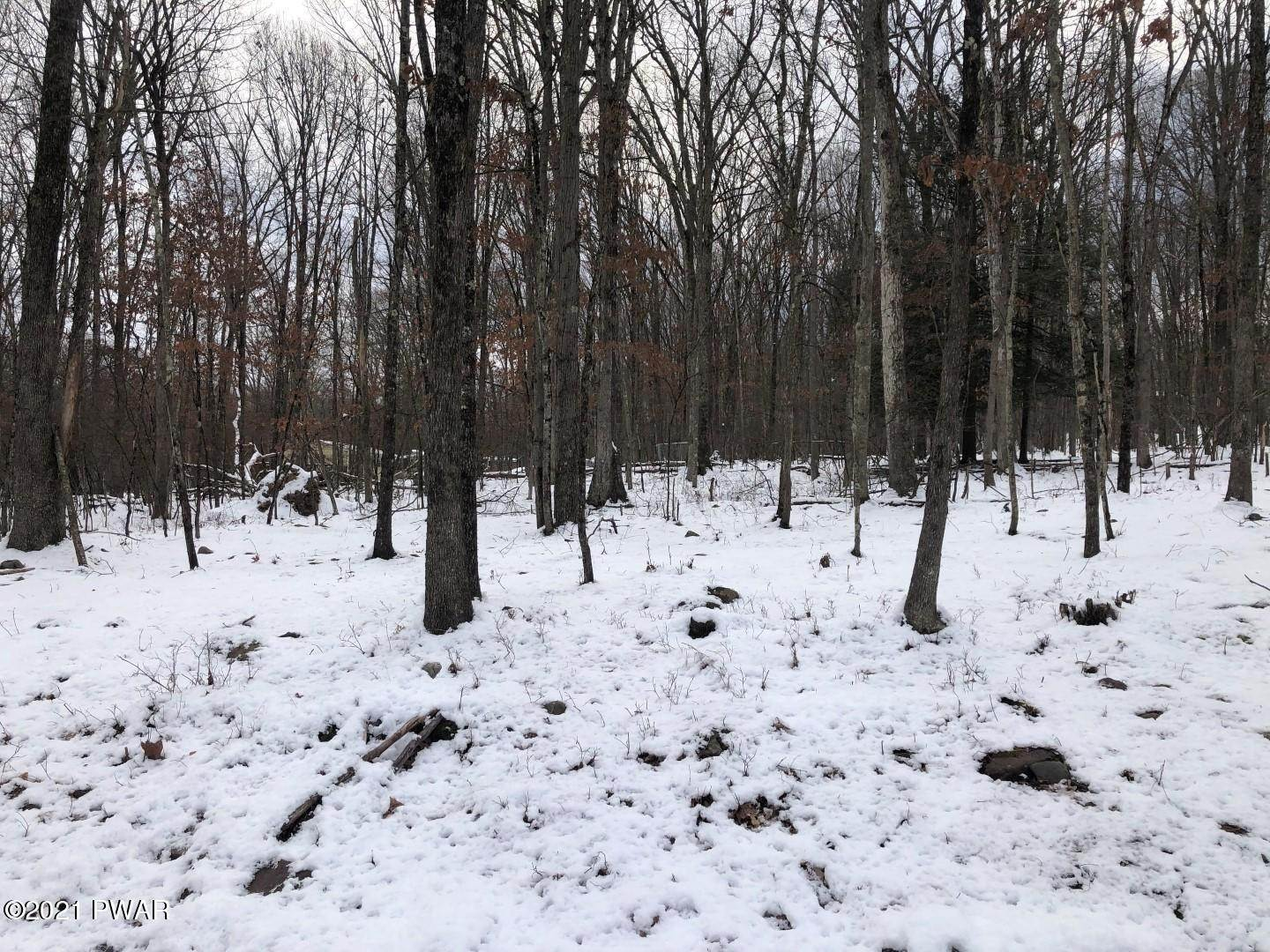 5. Land for Sale at 669 Blueberry Ln Hawley, Pennsylvania 18428 United States