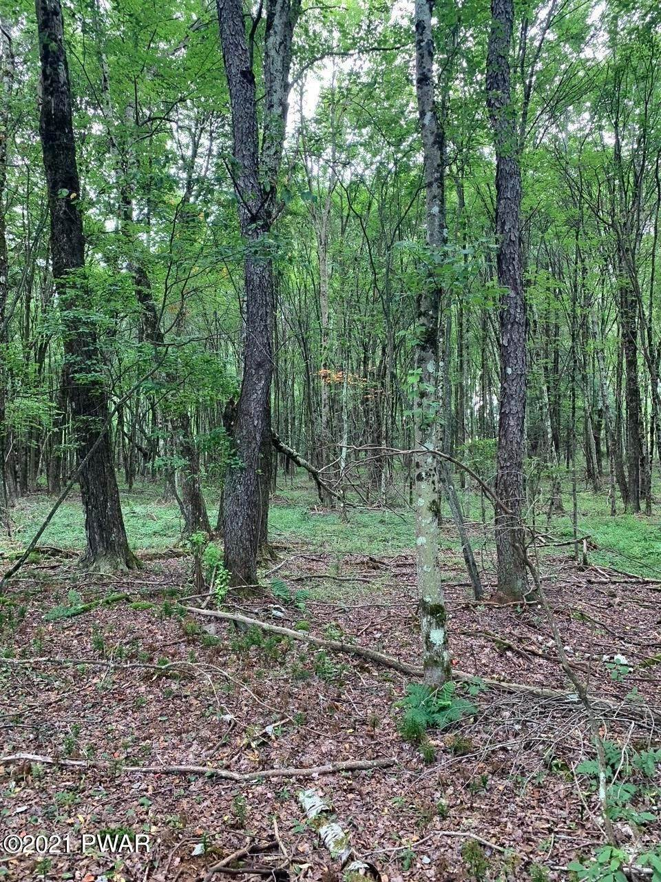 Land for Sale at Behr Rd Bethel, New York 12720 United States