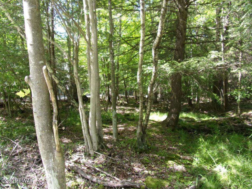 3. Land for Sale at 38 Woodview Ter Lake Ariel, Pennsylvania 18436 United States