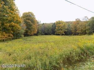 Land for Sale at 40 Acres Routes 196 & 507 Newfoundland, Pennsylvania 18445 United States
