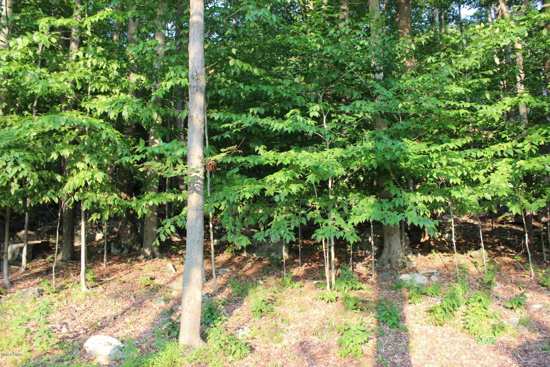 3. Land for Sale at 22 Hillberry Ln Lake Ariel, Pennsylvania 18436 United States